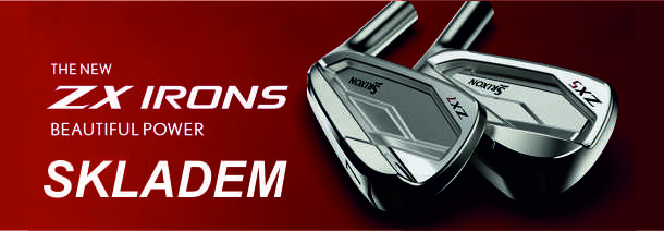 ZX irons